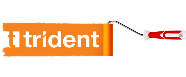 WELCOME-TO-TRIDENT-PAINTS-02-about